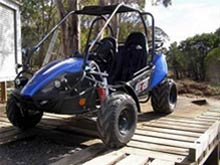 150 CC Twister GTS Twin Seat from Goulburn Off Road Carts