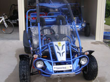 300CC Twister Hammerhead SS Cart from Goulburn Off Road Carts