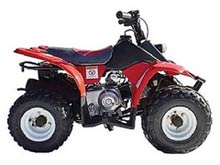 Wombat 50 Quad Bike from Goulburn Off Road Carts