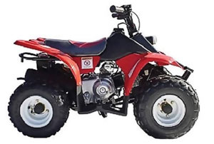 Wombat 50cc Quad Bike from Goulburn Off Road Carts