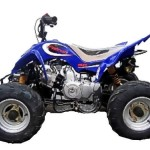 Mini Falcon 90cc Quad Bike from Goulburn Off Road Carts