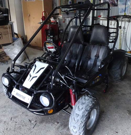 Used 150 Twister Buggy for sale at Goulburn Off Road Carts